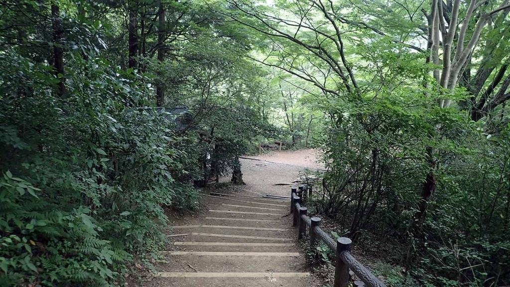 f:id:i-shizukichi:20180706171542j:plain