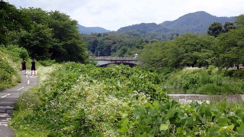 f:id:i-shizukichi:20180707194810j:plain