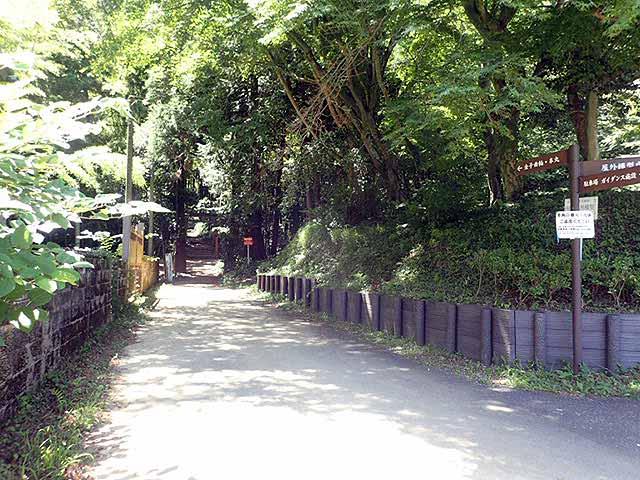 f:id:i-shizukichi:20180710200506j:plain