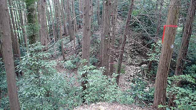 f:id:i-shizukichi:20180816191218j:plain