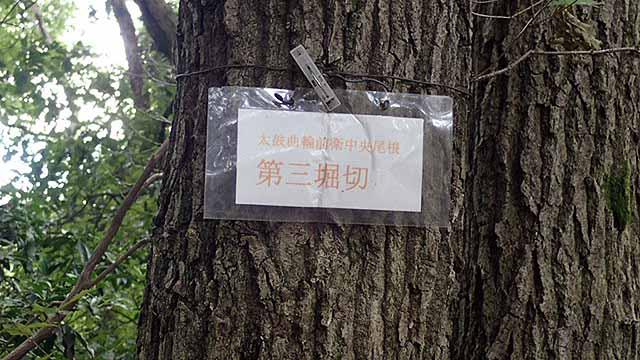 f:id:i-shizukichi:20180816191405j:plain