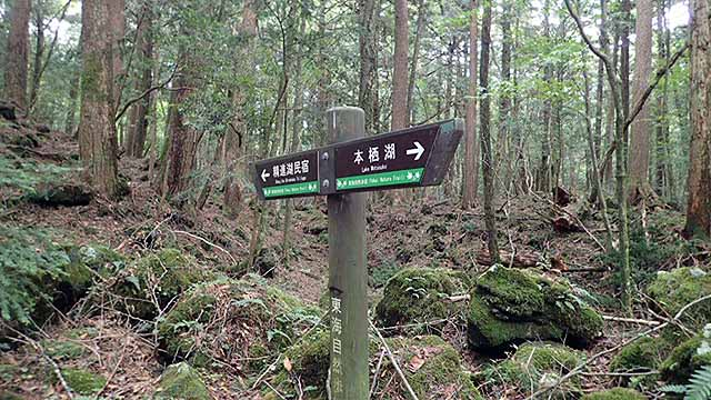 f:id:i-shizukichi:20180926203635j:plain