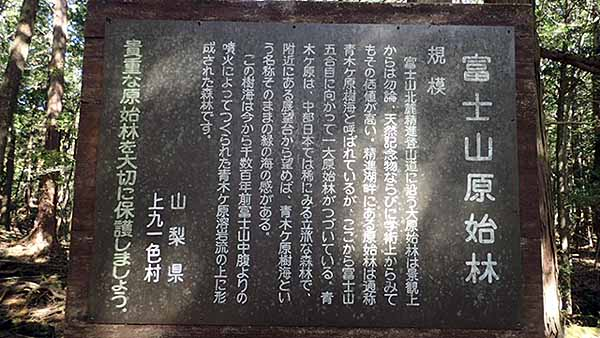 f:id:i-shizukichi:20181031192446j:plain