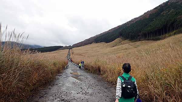 f:id:i-shizukichi:20181106203104j:plain