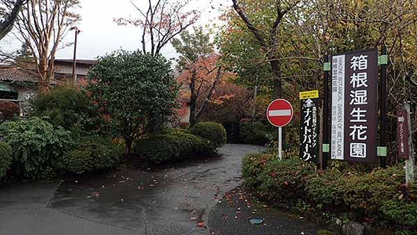 f:id:i-shizukichi:20181106203723j:plain