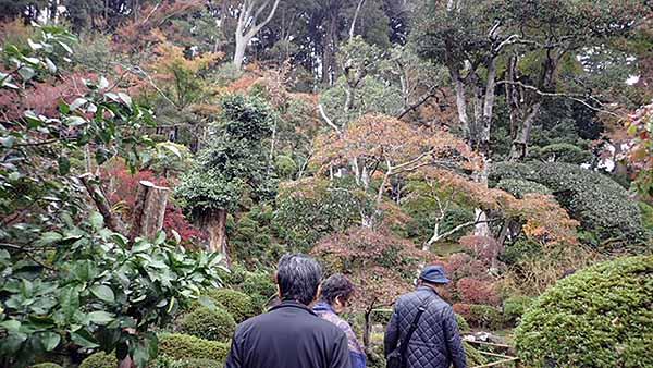 f:id:i-shizukichi:20181123121542j:plain