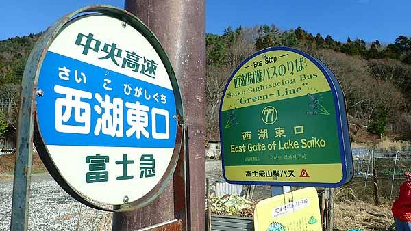 f:id:i-shizukichi:20181219221237j:plain