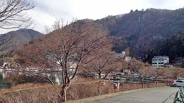 f:id:i-shizukichi:20190131132822j:plain