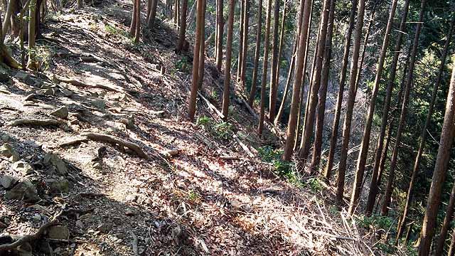 f:id:i-shizukichi:20190315215055j:plain