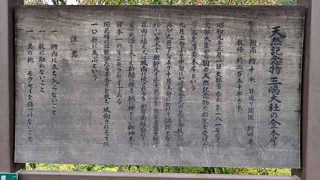 f:id:i-shizukichi:20190326223753j:plain