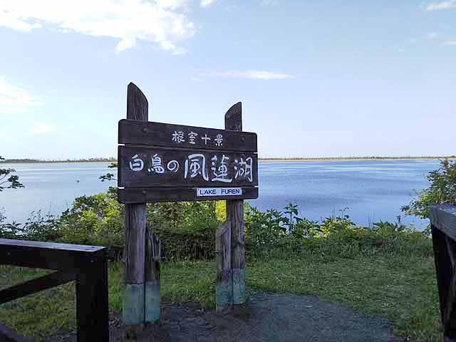 f:id:i-shizukichi:20190605162616j:plain