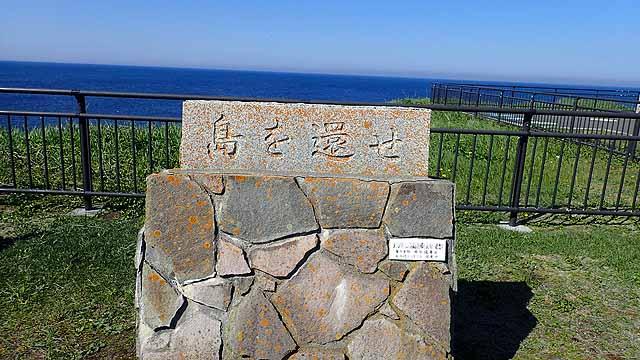 f:id:i-shizukichi:20190610093040j:plain
