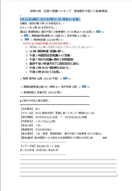 f:id:i-shizukichi:20191115003022j:plain