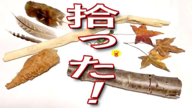 f:id:i-shizukichi:20200130164859j:plain