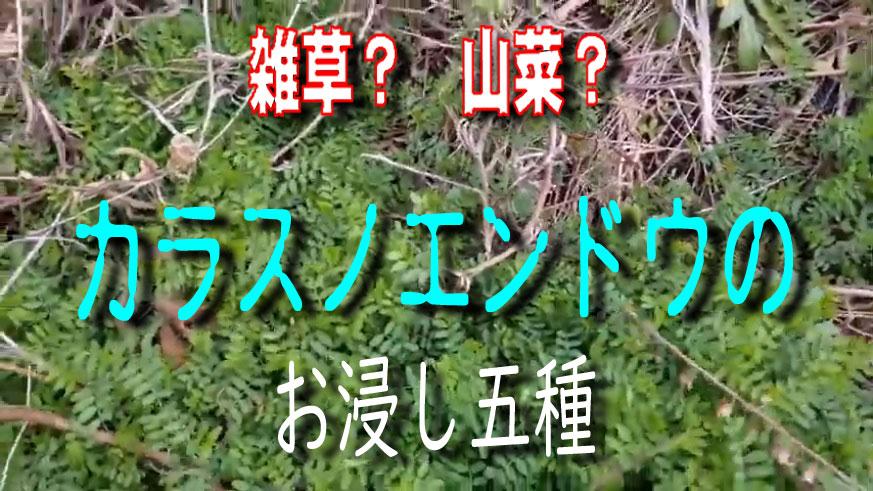 f:id:i-shizukichi:20200130164938j:plain