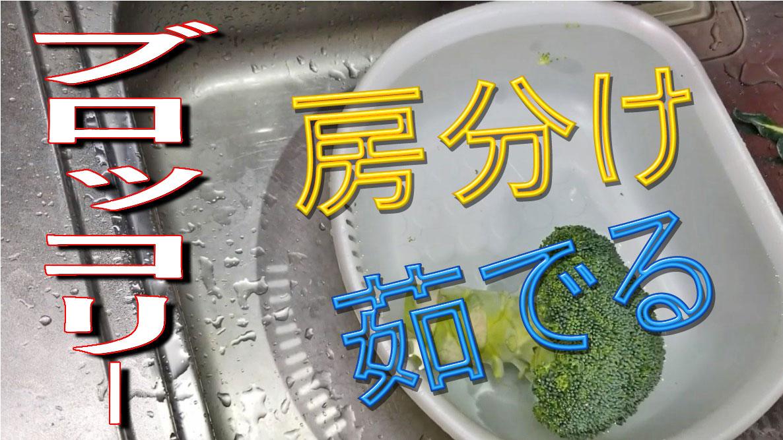 f:id:i-shizukichi:20200130165131j:plain
