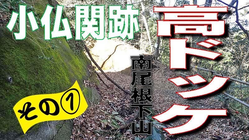 f:id:i-shizukichi:20200130165152j:plain