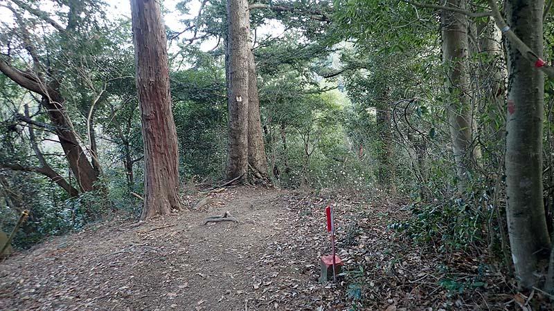 f:id:i-shizukichi:20200203221203j:plain