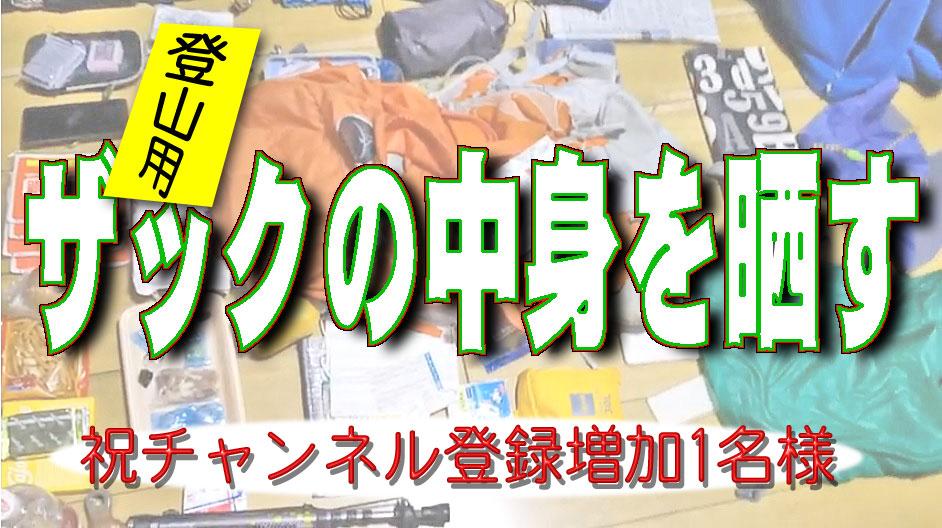 f:id:i-shizukichi:20200210225354j:plain