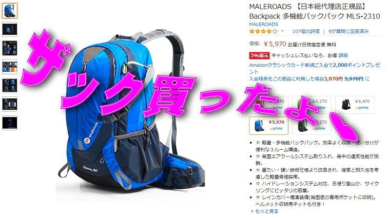 f:id:i-shizukichi:20200219131915j:plain