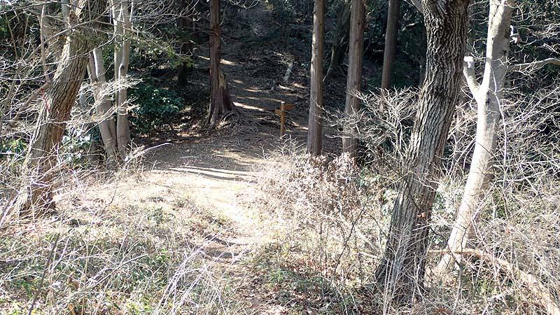 f:id:i-shizukichi:20200224181112j:plain