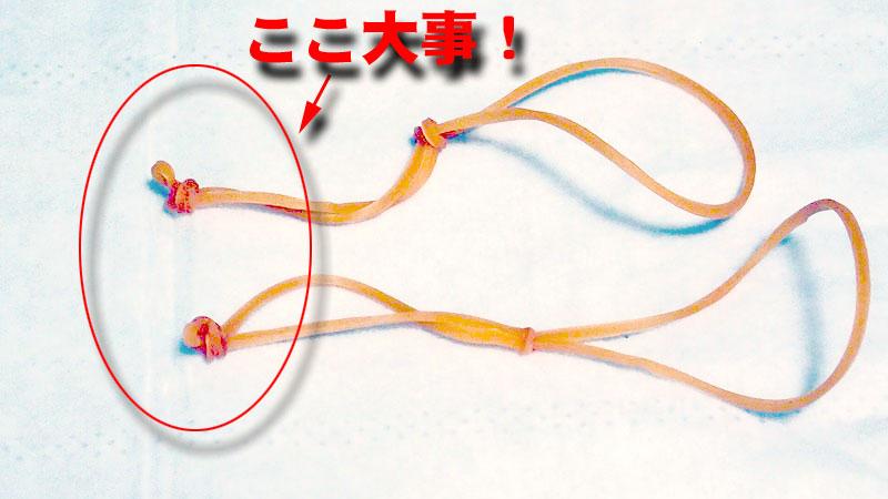 f:id:i-shizukichi:20200224221947j:plain