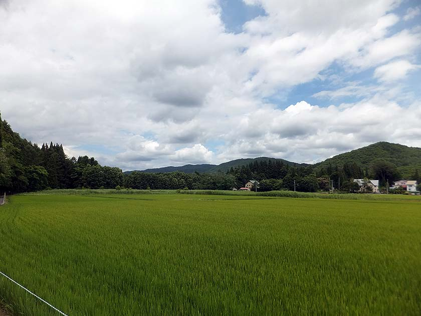 f:id:i-shizukichi:20200722141412j:plain
