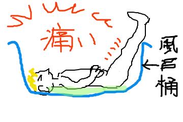 f:id:i-shizukichi:20200819175820p:plain