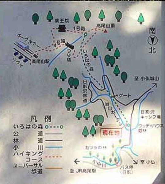 f:id:i-shizukichi:20201123140645j:plain