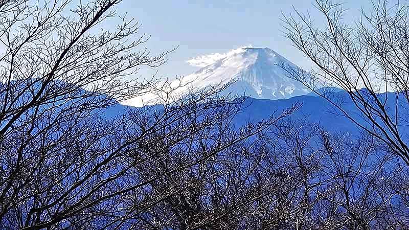 f:id:i-shizukichi:20210210215247j:plain
