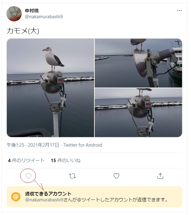 f:id:i-shizukichi:20210219180338j:plain