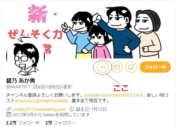 f:id:i-shizukichi:20210224001435j:plain