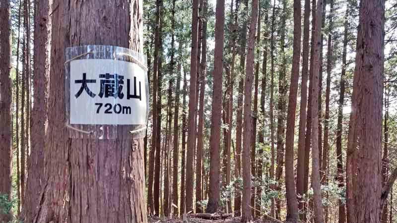 f:id:i-shizukichi:20210313150508j:plain