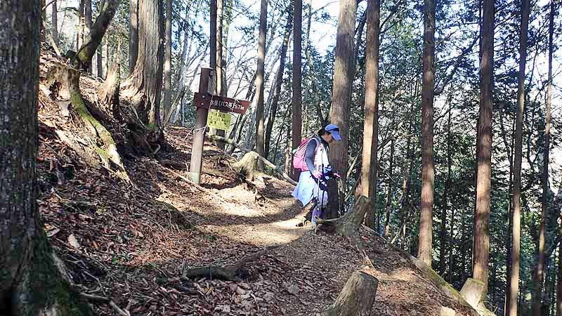 f:id:i-shizukichi:20210328214529j:plain
