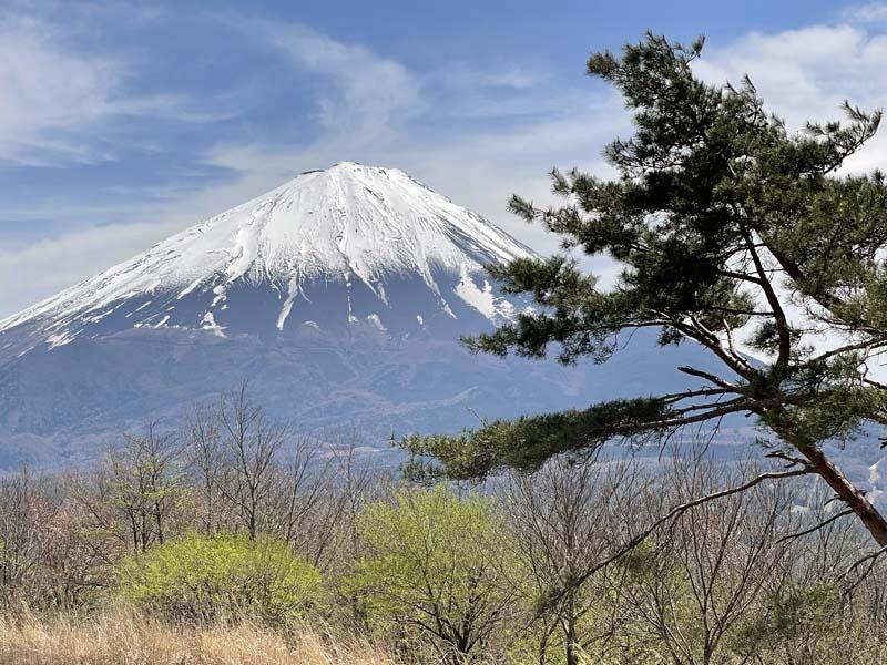 f:id:i-shizukichi:20210426210213j:plain