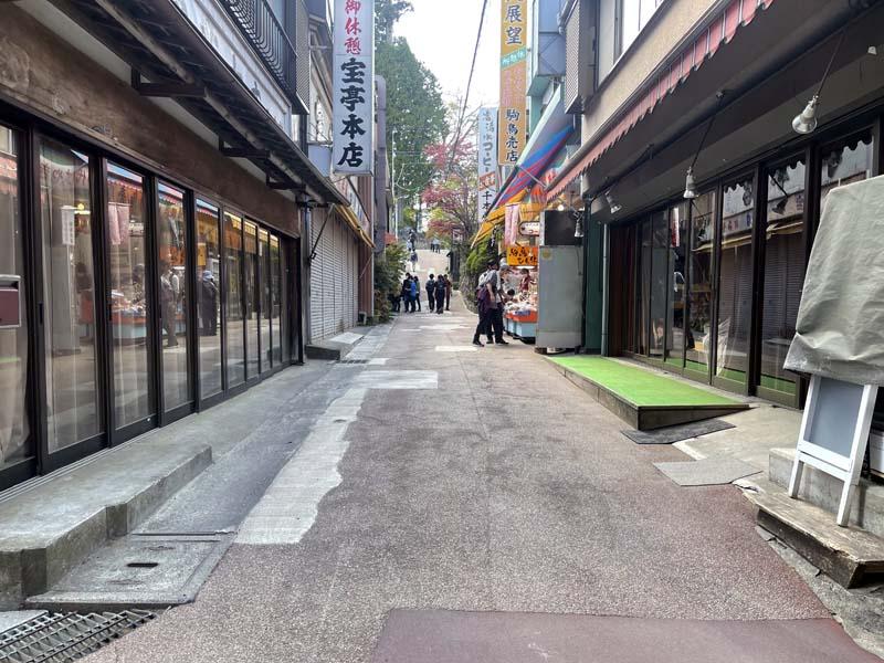 f:id:i-shizukichi:20210502173731j:plain