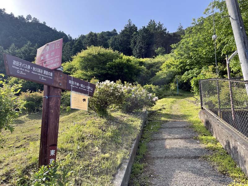 f:id:i-shizukichi:20210505191347j:plain