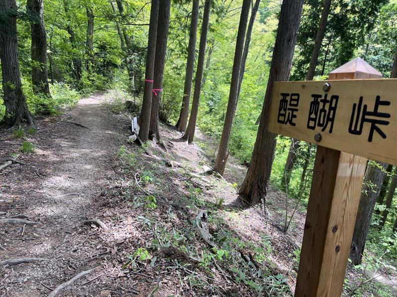 f:id:i-shizukichi:20210506193433j:plain