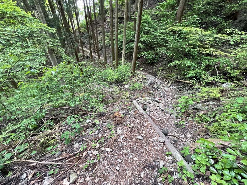 f:id:i-shizukichi:20210506195935j:plain