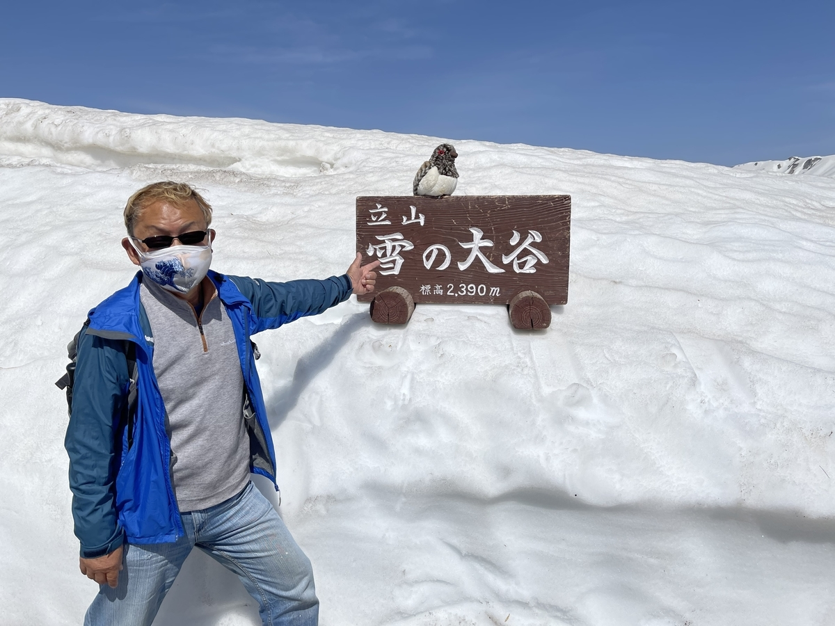 f:id:i-shizukichi:20210516085406j:plain