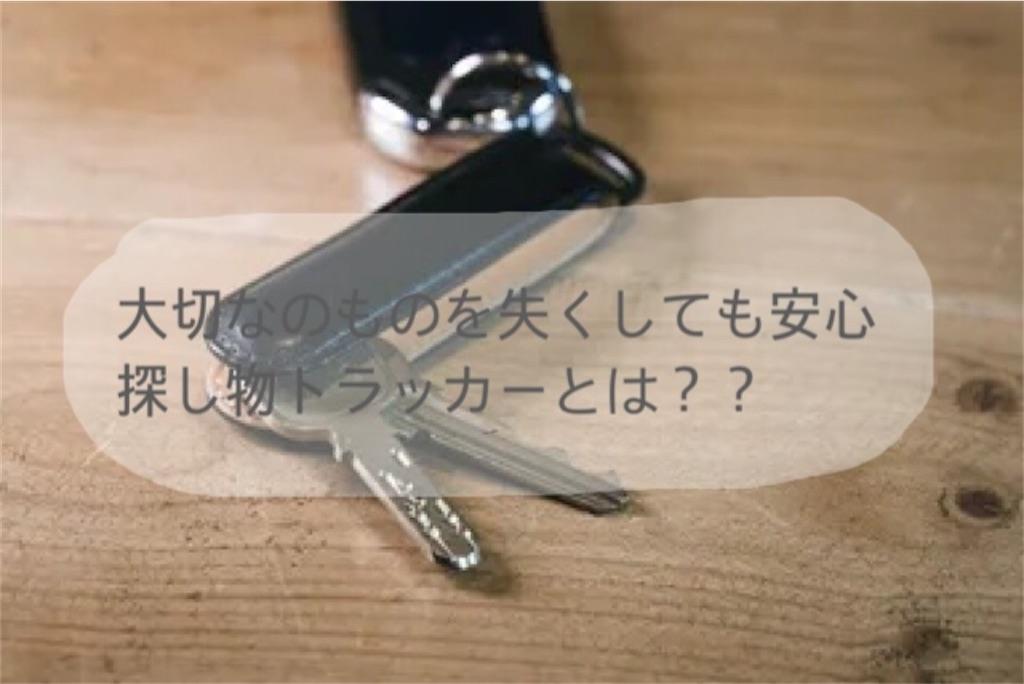 f:id:i-sitter:20210428205916j:image