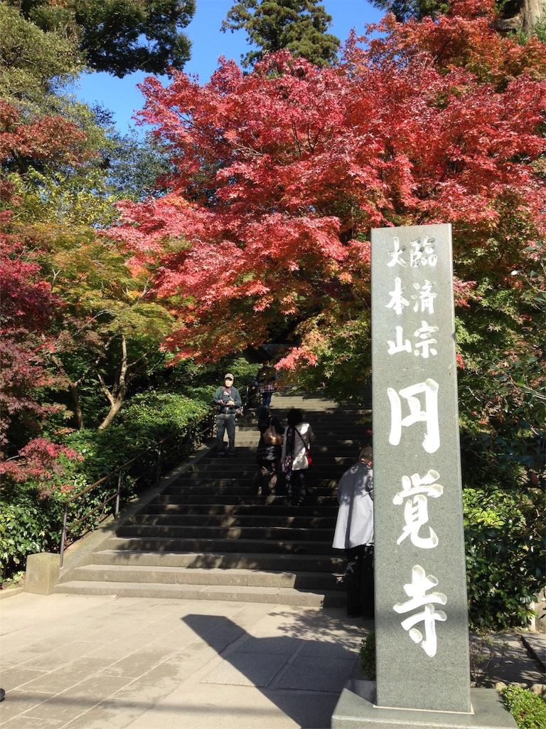 f:id:i-sumomo:20161118173452j:image