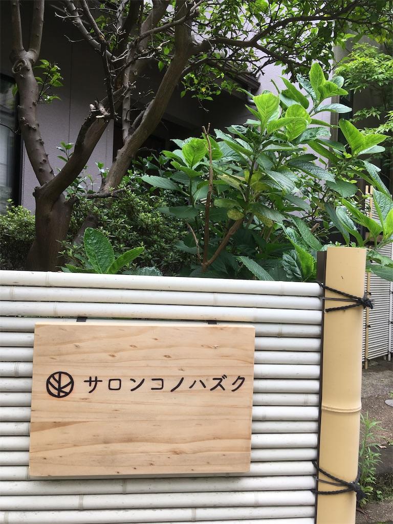 f:id:i-sumomo:20190713134310j:image