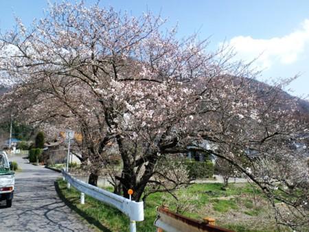 篠ノ井線沿いは標高600m
