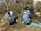 庭師4名で午前中の作業