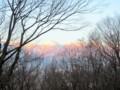 眼下の犀川ダム湖に‥数十羽の白鳥が見える