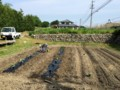 田んぼの後は‥野菜畑に