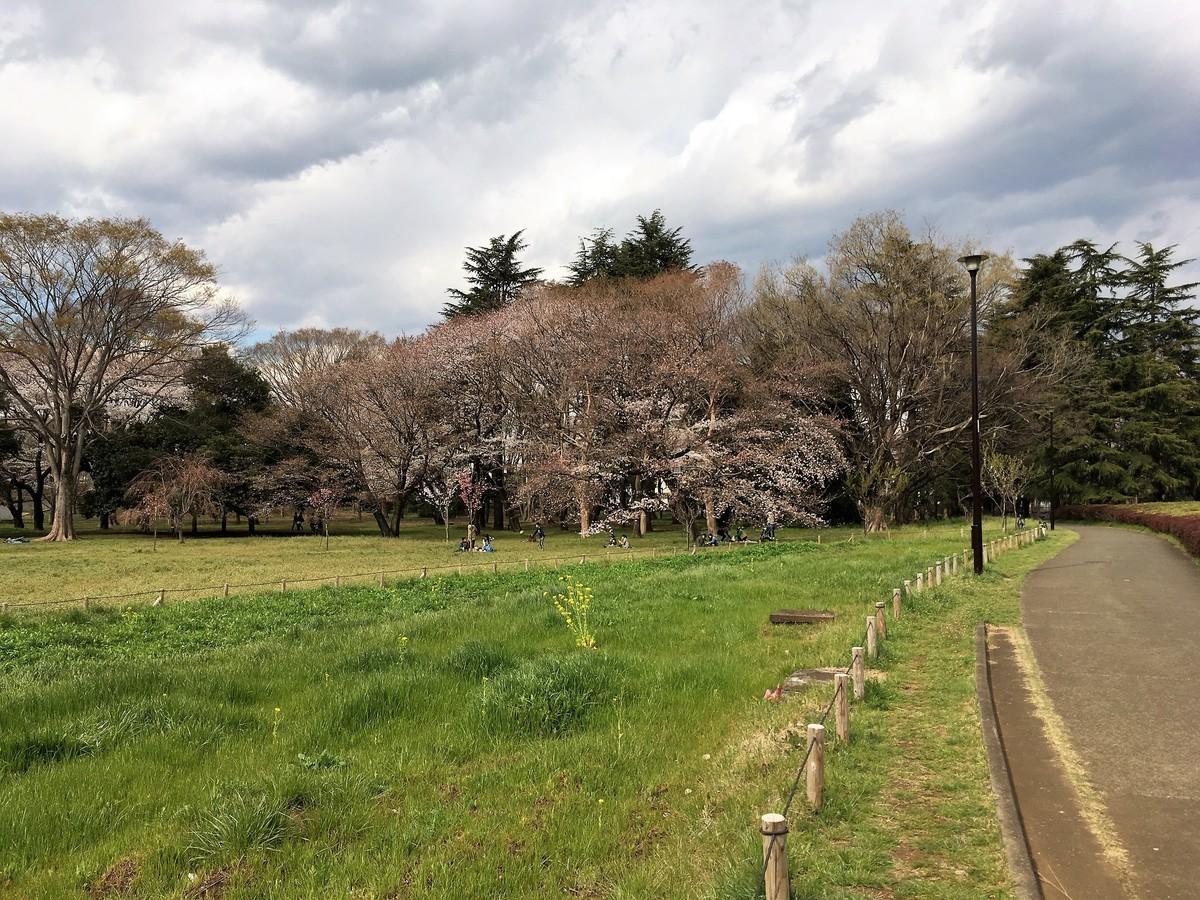 f:id:i-uchikawa:20190402141213j:plain