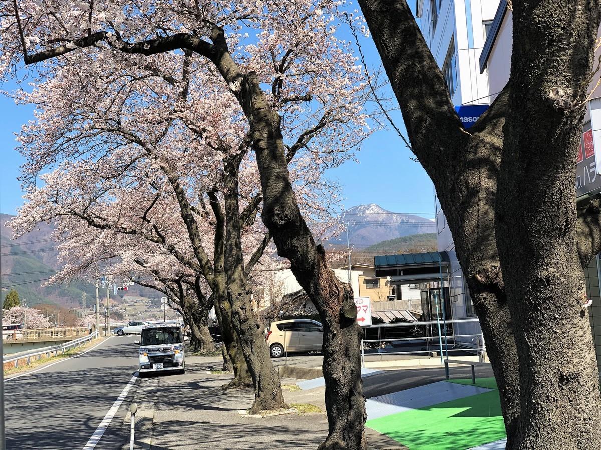 f:id:i-uchikawa:20190416135456j:plain