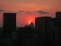 [品川][風景][夕焼け]太陽に萌えろ